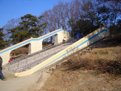 愛知県森林公園の滑り台