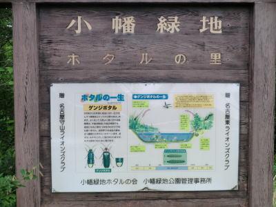 名古屋市守山区にある県営小幡緑地(本園)