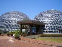 熱帯果樹温室