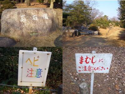 愛知県森林公園の岩石園