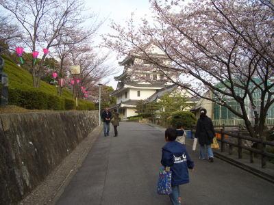 尾張旭市にある城山公園の桜まつり