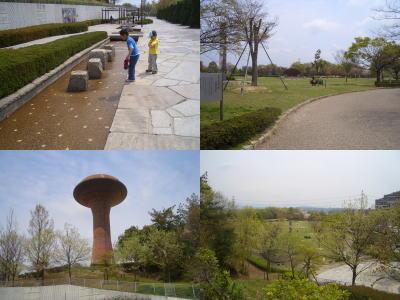 桃花台中央公園の風景