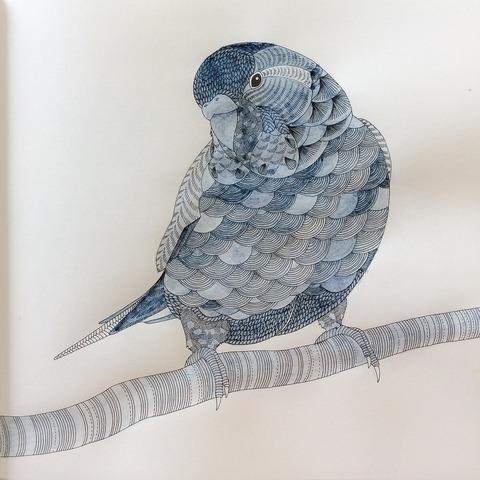 藍の墨で大人のぬり絵
