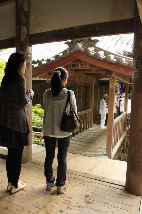 f浄瑠璃寺2