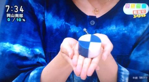 NHK藍色工房の藍染め石けん出演