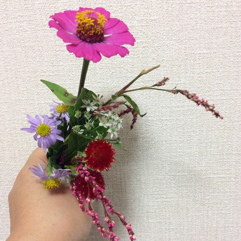 藍の花と秋の野の花