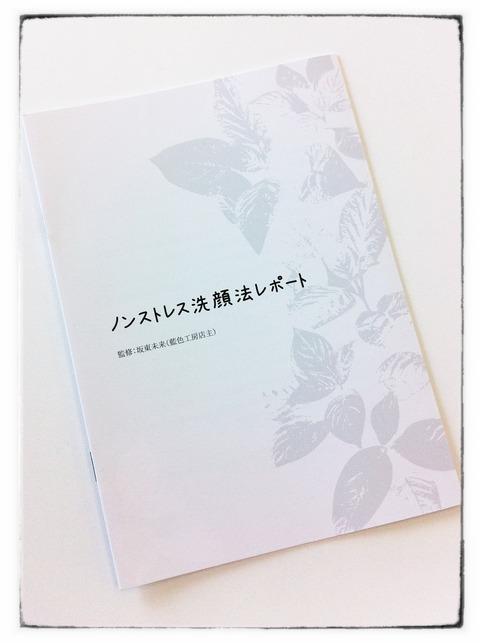 ノンストレス洗顔法レポート 小冊子