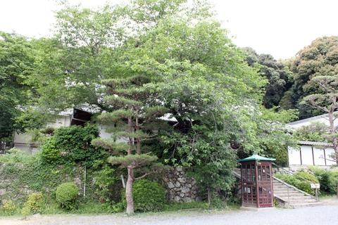 c繁多寺4