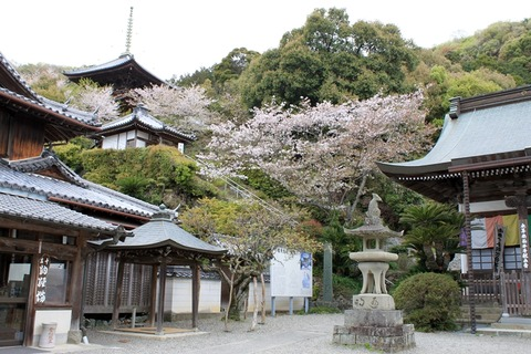 11i切幡寺⑥