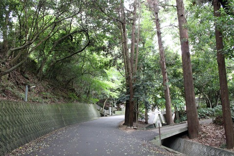 e太山寺1