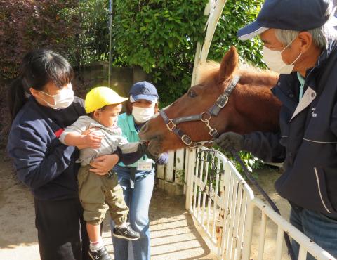 明石 保育園 引き馬