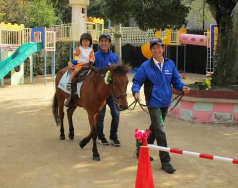 明石 保育園 引き馬体験6
