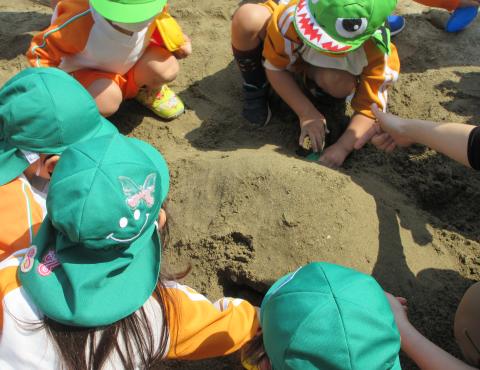 明石 保育園 砂遊び1