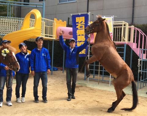 明石 保育園 引き馬体験1