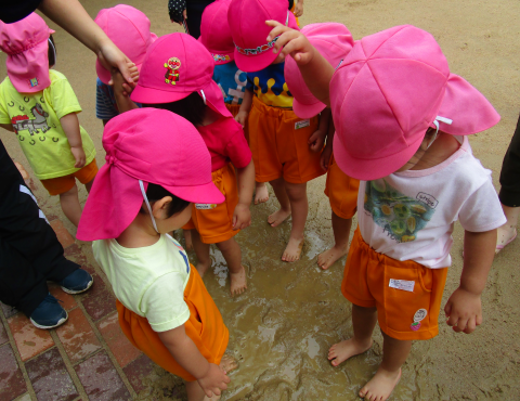 明石 保育園 泥んこ