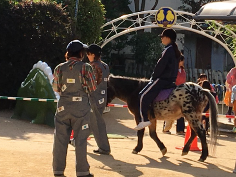 明石乗馬協会6