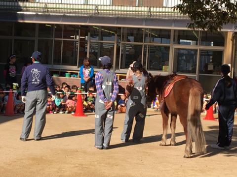 明石乗馬協会1