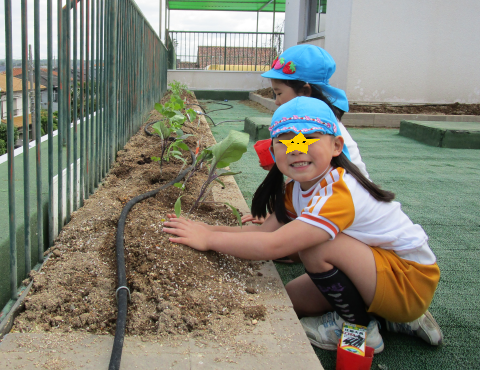 明石 保育園 苗植え