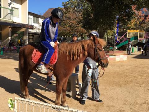 明石乗馬協会8