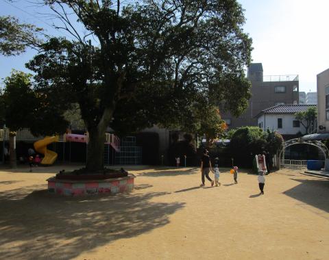 明石 保育園 園庭