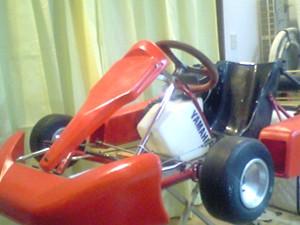 ついに買っちゃったレーシングカート