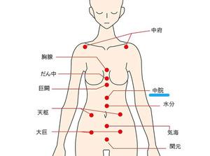 中脘(ちゅうかん