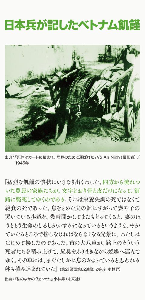 ベトナム大飢饉を知っとるけ?10