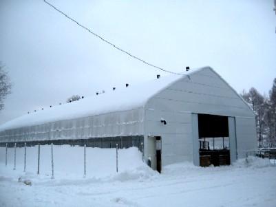12月5日の羊舎ビニールハウス ビニールハウスで建てられた、サフォークの羊舎。 これは12月5日