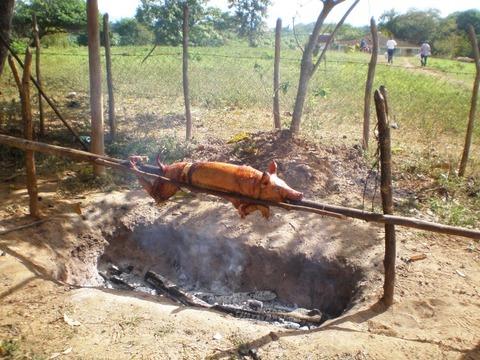 ロス・インヘニオス渓谷_周辺2_ブタの丸焼き