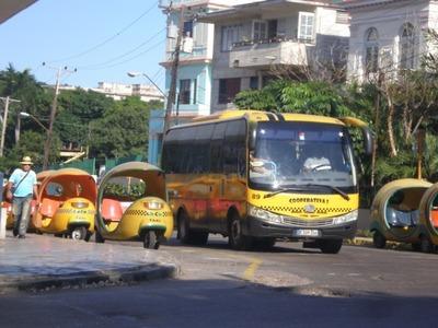 バス型タクシー&ココナッツタクシー