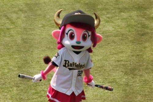 buffalobelltaso