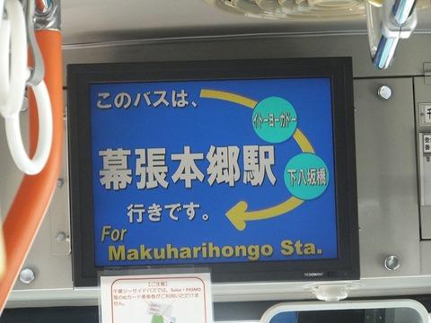 hongo (4)