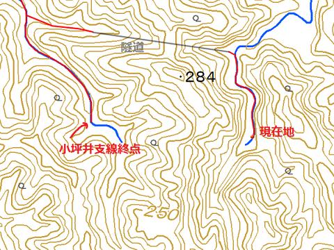 kotsuboi79
