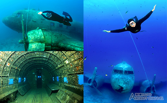 turkey-dc-3-reef