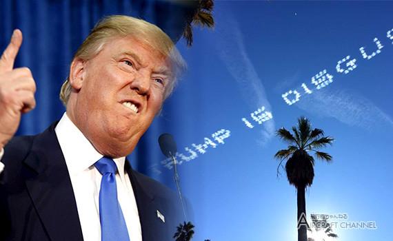 Trump-Is-Disgusting