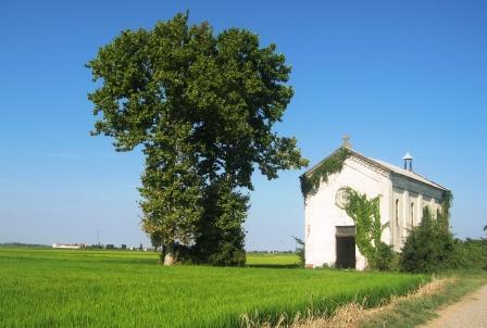 水田の中の古い教会