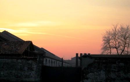 冬の夕方 牛舎のある農場で