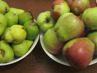 工房の果物