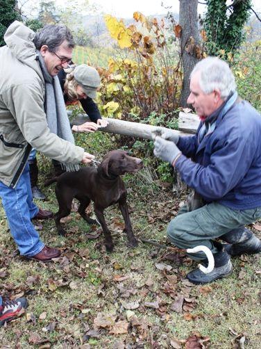 トリュフ犬と2