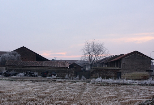 2月の牛舎