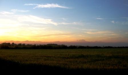 2007年9月8日 田園風景