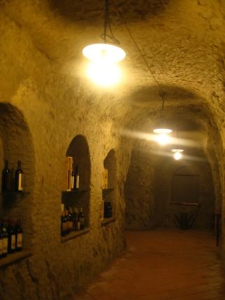 カンティーナでワイン選び