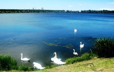 マントバの湖畔で