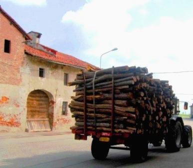 木材を運ぶ