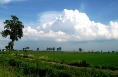 田園地帯に浮かぶ雲