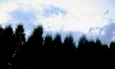 21luglio2006 空