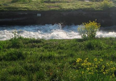 25apr2008 水の音 2