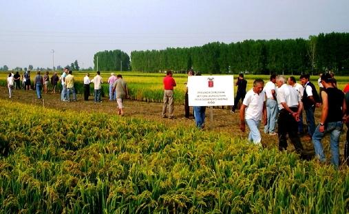 農業の視察