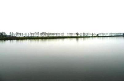 水田01Apr2007