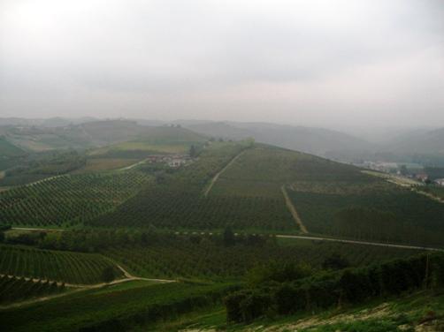 Grinzane Cavourの丘から
